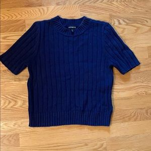 Express cropped short sleeve sweater